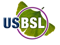 USBSL_LogoRenderedHiRes-removebg-preview (2)