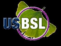USBSL_LogoRenderedHiRes-removebg-preview (2)